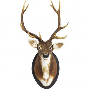 deer_interiorblog